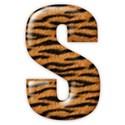 s_tiger_mikki