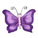 8 purple butterfly