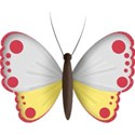 bos_gh_butterfly