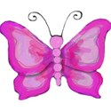 pink painted butterfly