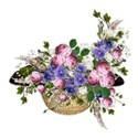 cluster straw hat flowers 01
