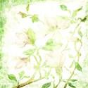 green 2 emb