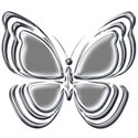 silver butterfy