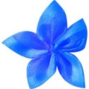 synamay blue bow