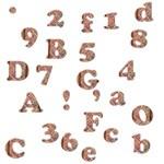 Brown Alphabets