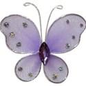 SC_PurpleButterfly
