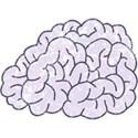 OneofaKindDS_Super-Genius_Brain