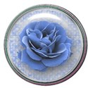 blue rose button