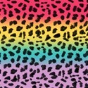 paper-rainbow-leopard