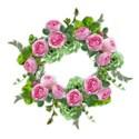 cabbage rose cluster 05