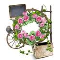 rose garden cluster 01