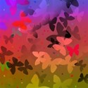 Butterfly shadows background