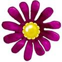 purple flower yellow center