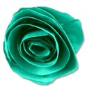 paperflowergreen
