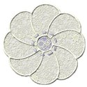 cream lace flower