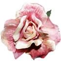 BD_Rose_02
