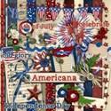 00 americana elements