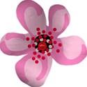 Paper Flower 02