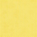AYW-WildAtHeart-YellowPaper2