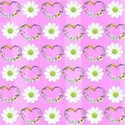 pink hearts and daisy background