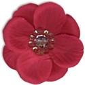 flower5-ar-mikkilivanos
