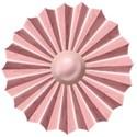 pink fan flower2