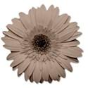 flowertan