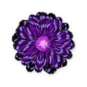 purple flower swirl