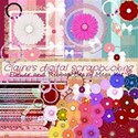 flower and ribbon crazy mege kit
