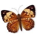 BD_Butterfly_03