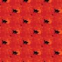 cat orange red