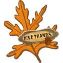 dzava_thankful_thanks