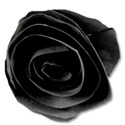 paperflower1black
