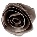 paperflower1brown2