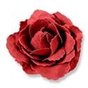 BD_Flower_01