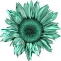 lisaminor_yardwork_sunflower_a