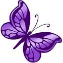 butterfly purple3