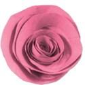 flower2pink