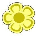 flower 1 yellow