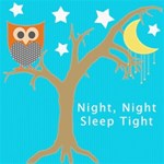 Night,Night Owl