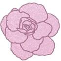rose 2 pink