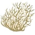 tunbleweed