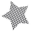 fishnet star