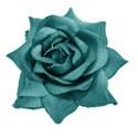rose teal