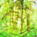 background (7)