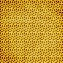 stiereny_gonewild_animalprints