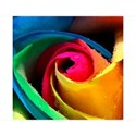 rainbow_flower_wallpaper_for_mobile-t2