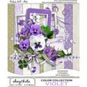 0000 KIT COVER Violet Full Kit