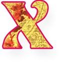 x lower