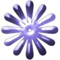 brad flower 5